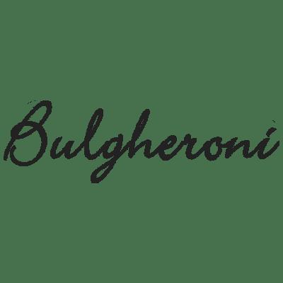 Bulgheroni Logo