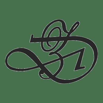 Di Zhao Logo