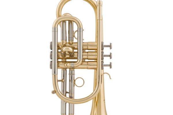 Kornett Arnolds 655